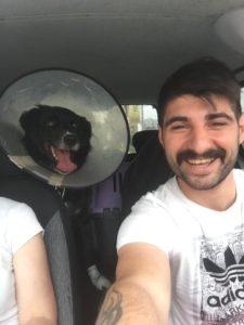 Pet Taksi, İstanbul