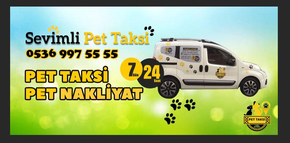 Bahçeşehir Pet Taksi Servisi