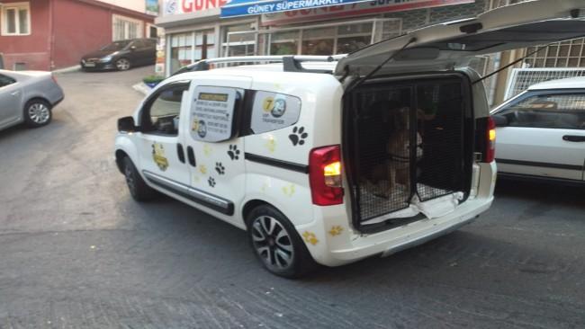 Zekerya Köy Pet Taksi