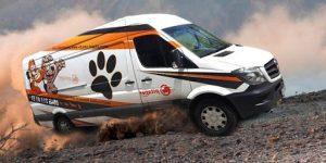 Pet Taksi Ne İşe Yarıyor?