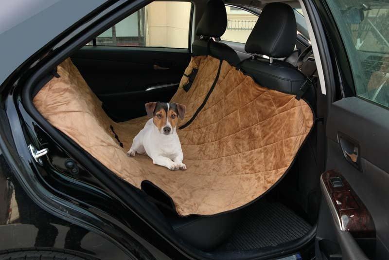 Hayvanlarınızı Pet Taksi ile İstediğiniz Yere Götürün