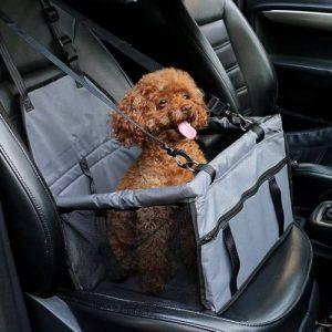 Hayvanları da Düşünen Bir Pet Taksi Var
