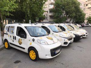 pet taksi araba