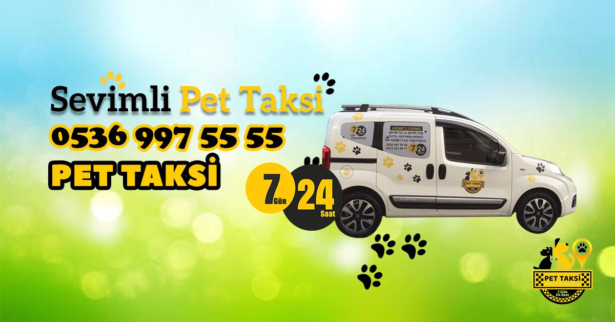 Akdeniz Bölgesi Pet Taksi